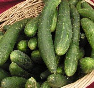 Cucumbers . . .